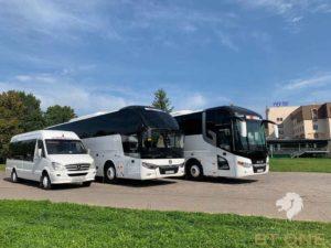 raznye avtobusy